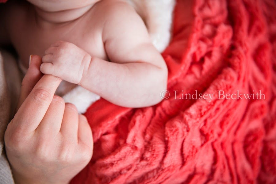 Bay Village Newborn portrait photographer